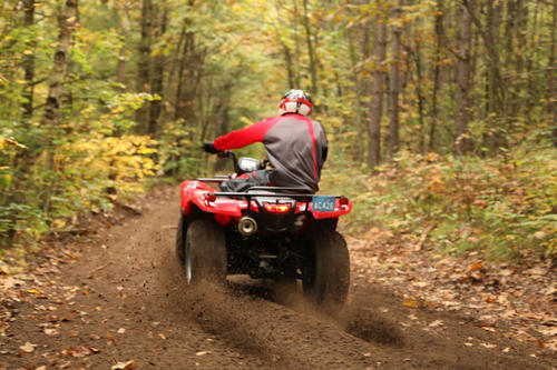 ATV-Riding-Forest