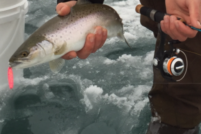 Fishing report visitashland for What time will the fish bite today