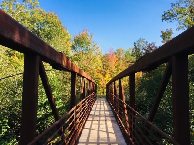 Morgan Falls Bridge